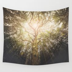 Buy I found a tree in the forest by HappyMelvin as a high quality Wall Tapestry. Worldwide shipping available at Society6.com. Just one of millions of products available.