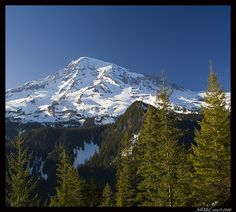 Mt Rainer from Paradise Road