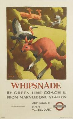 Whipsnade ~ Stanislaus Brien
