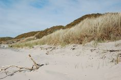 We have lots of Beaches nearby! Come along and explore.