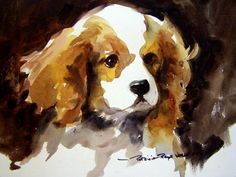 Watercolor Dog Portrait Animal Paintings, Animal Drawings, Art Drawings, Animals Watercolor, Watercolor Paintings, Watercolour, Illustrations, Illustration Art, Cocker Spaniel