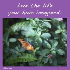 Live the life you have imagined. ~Thoreau