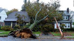 A downed tree and fallen power lines lie over homes Monday on Harvard Street in Garden City, New York.  Photos: Sandy's destructive path - CNN.com
