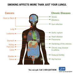 Smoking harms nearly every organ of the body. Quit today to live a healthier lifestyle. #WorldHealthDay