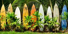 Maui Surfboard Fence Print by BennyKaufmann on Etsy Maui, Surfboard, Fence, Plant Leaves, Canvas Prints, Places, Creative, Handmade, Etsy