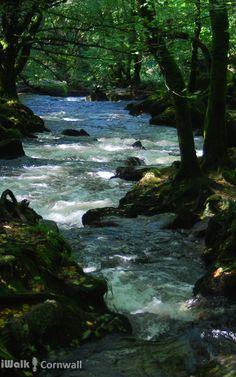 River Fowey, Golitha Falls, Cornwall