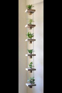 Vertikale Bepflanzung Hangender Garten Innen Indoor Plants Decor