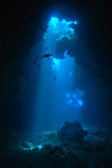 Learn to dive and god to First Cathedrals Dive Site. #Hawaii