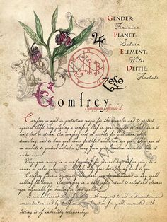 The Cackling Cauldron witches are proud to extend their knowledge of magick and all of its many possibilities in these ever expanding grimoire page sets. Each set contains 4 pages of detailed images and writings that will make a wonderful prop piece for your Halloween witches kitchen or