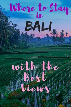 Where to stay in Bali with the best views. Bali Hotels and accommodation in Ubud, Uluwatu, Seminyak and North Bali with views of rice fields, volcanoes, ocean views. Romantic destinations surrounded by rainforests and stunning nature. Private villas with Travel Advice, Travel Guides, Travel Tips, Travel Goals, Travel Checklist, Travel Hacks, Romantic Destinations, Honeymoon Destinations, Munduk Bali