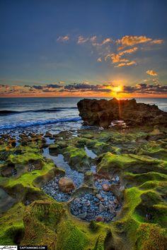 golden sunrise at coral cove park | Coral Cove Park Sunrise Over Rock at Ocean in Jupiter Florida