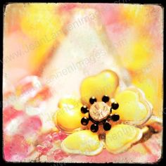 Eye Candy - FLOWER JEWELS - 7x7 Fine Art Print, Spring Pastels,TTV, Square, Polaroid Style, Sepia,Necklace, Vintage Look, Coral,Salmon,Orange Pink, Pastel, Tangerine,Lemon Yellow, Jewelry, Flora, Floral - Photography by Jean Lannen, The Other Jeanie on Etsy, $25.00