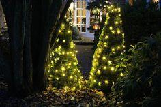 Fru Pedersens have: Juletræer af mos.