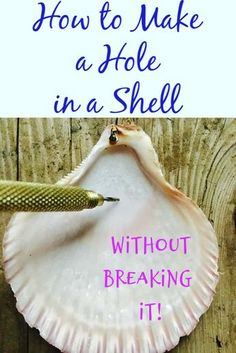 Fun crafts and other diy projects you can make for decorations around the house or projects with the kids. Sea Crafts, Sea Glass Crafts, Nature Crafts, Crafts To Make, Crafts With Seashells, Beach Themed Crafts, Seashell Projects, Driftwood Crafts, Seashell Crafts Kids