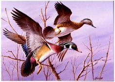 """""""Pair of Woodies""""Original Watercolor in Private Collection -Waterfowl Paintings Original Waterfowl Paintings by Jim Killen - Waterfowl Paintings by Jim Killen"""