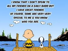 I have great friends life quotes quotes cute friendship cartoons life quote charlie brown snoopy friendship quotes peanuts