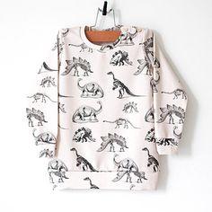 Dinosaur Organic Cotton Baby Sweatshirt