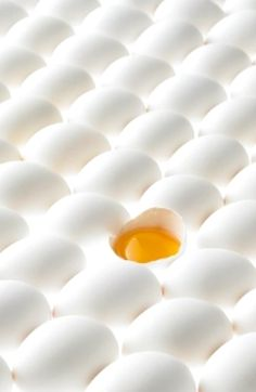 #White eggs #yellow yolk ❖Blanc❖ http://lightthought.tumblr.com/post/4874181728