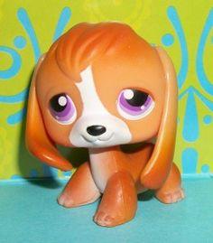 Littlest Pet Shop Beagle   Littlest Pet Shop~#301 RARE ORANGE BEAGLE PUPPY DOG Purple Eyes~R151 ...