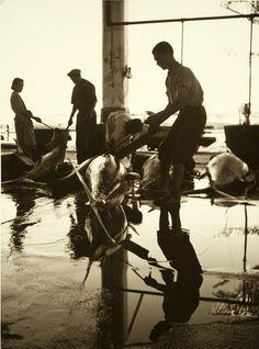 """Série exposição """"Motivos do Sul"""". Tavira, 1943/45."""