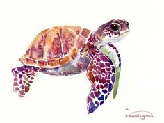 size: Stretched Canvas Print: Sea Turtle by Suren Nersisyan : Using advanced technology, we print the image directly onto canvas, stretch it onto support bars, and finish it with hand-painted edges and a protective coating. Sea Turtle Painting, Sea Turtle Art, Baby Sea Turtles, Sea Turtle Drawings, Painting Edges, Painting Prints, Watercolor Paintings, Watercolour, Art Prints