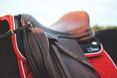 Ogilvy Equestrian Approved!  Equine, Half Pad, Saddle Pad, Helmet, Saddle, Fashion, Style, Comfort, Equipment, Tack, Horse, Pony, Gray, Chestnut, Bay, Black, Horse Show, Show Jumping, Equitation, Pony