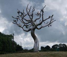 The Last Oak  near Enniscorthy, Wexford, Ireland