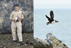 A Crazy Idea to Bring Back Atlantic Puffins Is a Success | Audubon Magazine