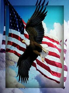 Awsome pic God Bless America