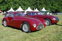 Alfa Romeo 2500 Competizione (Chassis 920002 - 2003 Concours d'Elegance Paleis 't Loo) High Resolution Image Alfa Romeo Cars, Milano, Old Cars, Cars And Motorcycles, Antique Cars, Transportation, Classic Cars, David, Elegant