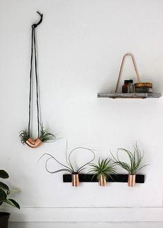 Le cuivre pour sublimer les plantes #pourchezmoi