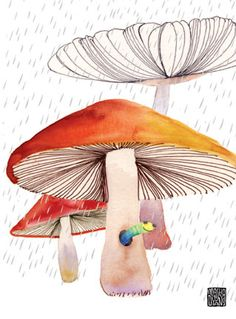 Greeting Cards, Posters, Home Decor, Apparel - Collection - mushroomsworm