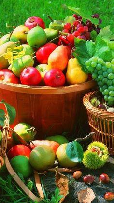 #fresh fruit | #basket             goo.gl/CGH1cv Colorful Fruit, Exotic Fruit, Tropical Fruits, Fresh Fruits And Vegetables, Fruit And Veg, Photo Fruit, Fruit Creations, Food Carving, Fruit Photography