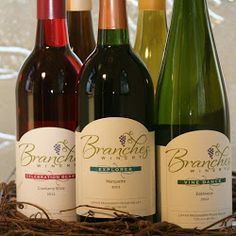 Branches Winery | Westby WI | WISCONSIN Great River Road