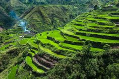 Cordillera Mountains, Philippines  #travel #worldtravel #traveltheworld #vacation #traveladdict #traveldestinations #destinations #holiday #travelphotography #bestintravel #travelbug #traveltheworld #travelpictures #travelphotos #trips #traveler #worldtraveler #travelblogger #tourist #adventures #voyage #sightseeing #asia #asiantravel  #CordilleraMountains #Philippines