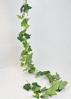 Growing Bamboo - Διακοσμητική γιρλάντα κισσός 170cm Herbs, Plants, Herb, Plant, Planets, Medicinal Plants