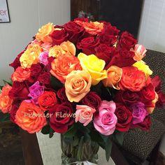 100 Multicolor long stemmed Roses
