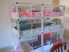 This looks good for a guinea pig cage! I'd probably get 3 sets of guinea pigs and then put 2 in each layer. Diy Guinea Pig Cage, Guinea Pig House, Guinea Pigs, Gerbil, Hamsters, Diy All Purpose Cleaner, Hedgehog Cage, Pet Cage, Baby Animals