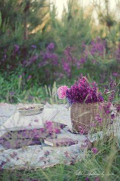 eligraphix:  sunflowersandsearchinghearts:  Lavender Picnic via Searching Hearts @ Pinterest  ❤