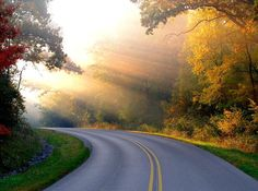 sunrays and road