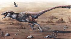 New Contributor, Dakotaraptor , and Emily Willoughby Artwork  Today +David Blagic, an amateur paleontologist from Serbia, writes about Dakotaraptor stei... - Steven Spence - Google+