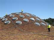 Soil as Insulation  The LEED program encourages and rewards architects who create innovative, imaginative energy saving solutions. Architect Renzo Piano achieved this in his design for the Living Roof. Not only does the green rooftop canopy visually connect the building to the park landscape, but it also provides significant gains in heating and cooling efficiency.