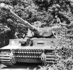 German heavy tank PzKpfw VI «Tiger» № 232 101 th Heavy Tank Battalion of the SS. Tank commander – Unterscharführer SS Kurt Kleber from the company of Michael Wittmann villers bocage