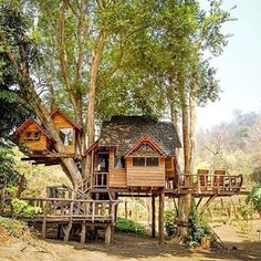 Creative Tree House Design - Page 34 of 41 Adult Tree House, Tree House Plans, Beautiful Tree Houses, Cool Tree Houses, Tree House Resort, Tree House Designs, In The Tree, Play Houses, Future House