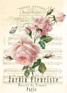 Vintage rose - music sheet Digital collage p1022 free for personal use...