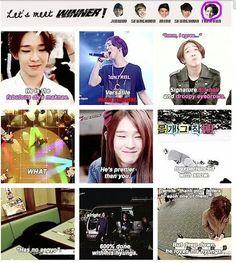 I still support all five of them Winner Meme, Winner Kpop, Song Minho, All About Kpop, Love K, Inner Circle, Pop Bands, Korean Music, Yg Entertainment