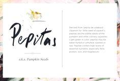 Wellness Encyclopedia: All About Pepitas + How to Roast Pumpkin Seeds