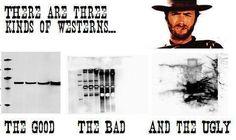 Electrophoresis Eastwood style?