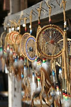 #display  The dream catcher is fashioned from a hoop of red willow with a webbing of animal sinue which takes the form of a web (like a spider's web). Attached at the bottom of the loop are a bead (usually seed or carved wood) and a feather.