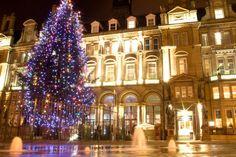 Leeds Queens hotel & Christmas tree at night